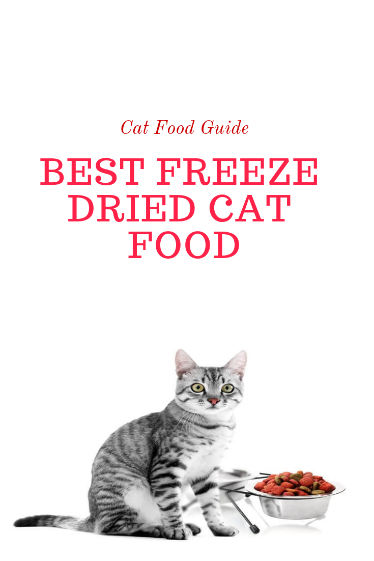 Best freeze dried cat food Cat food, Cat food reviews