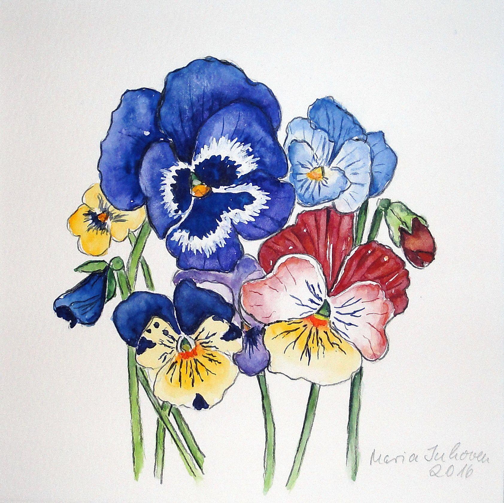 stiefmütterchen - watercolormaria inhoven