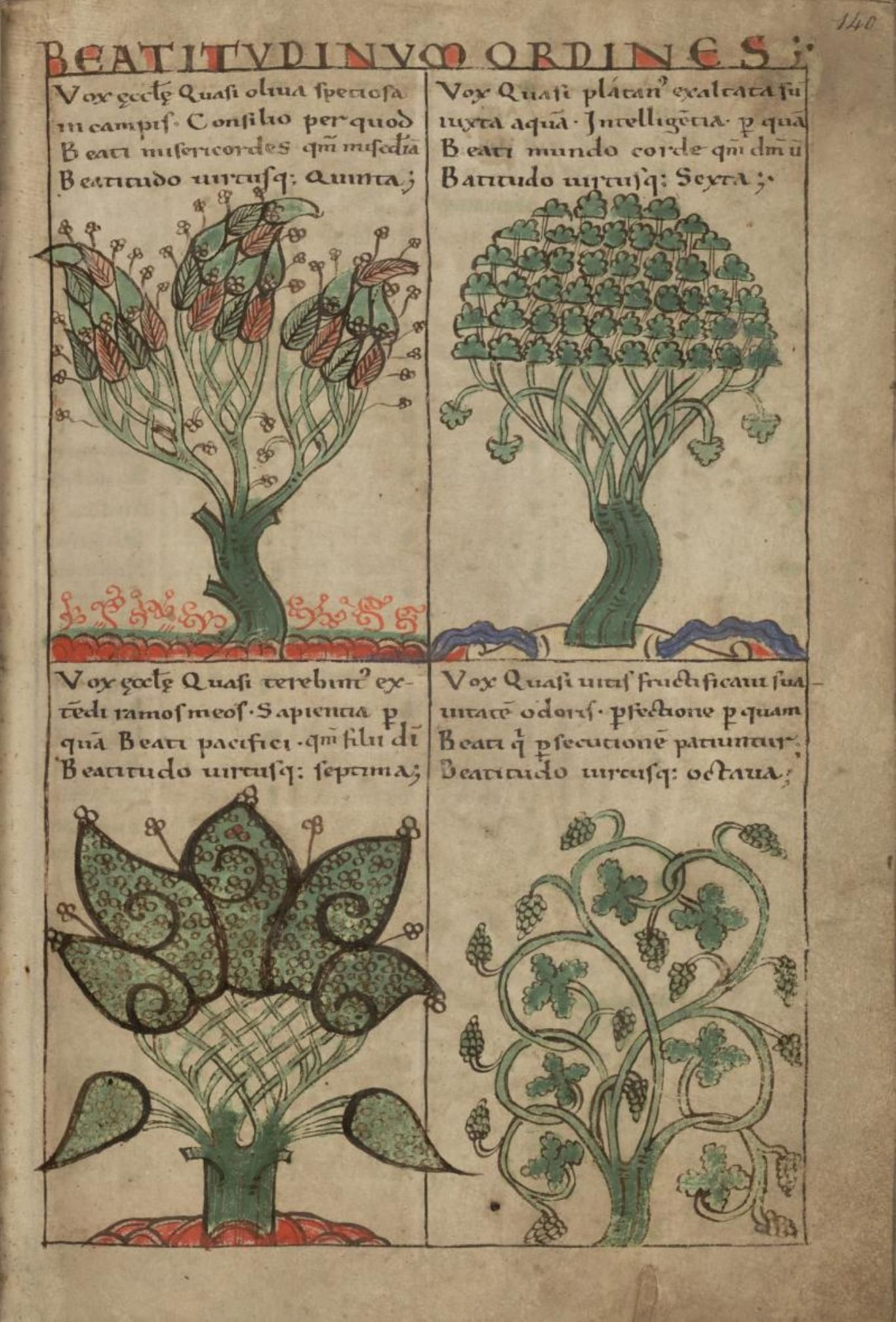 The trees and their symbolic significance olive tree 5th liber floridus book of flowers is a medieval encyclopedia that was compiled between 1090 and 1120 by lambert canon of saint omer buycottarizona