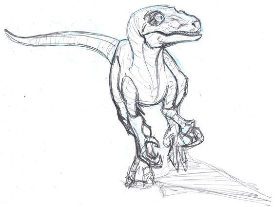 velociraptor ausmalbilder dinosaurier raptor | aiquruguay
