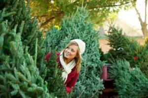 Holly Acres Christmas tree farm - Elizabeth, Colorado