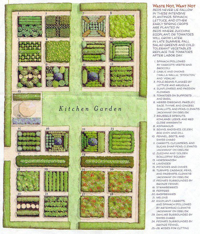 Kitchen Herb Garden Design: Arch. LANDscape GARDEN Design