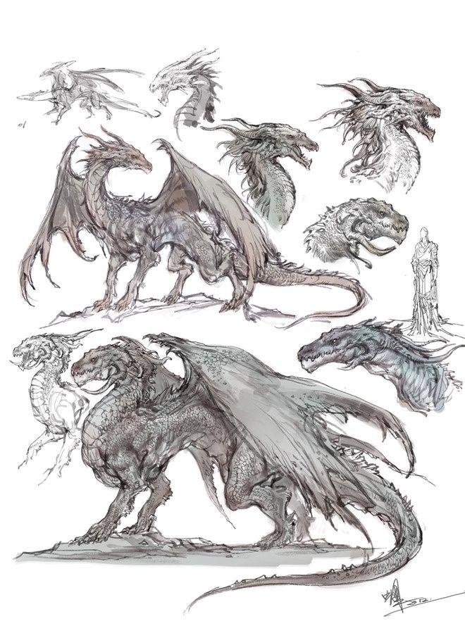 Dragon designs  #design #idea #anatomy #wyvern #heads #body