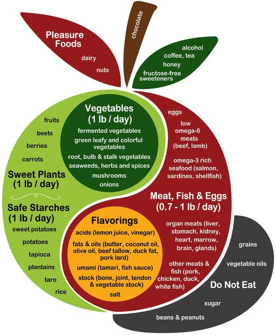 the modified paleo diet