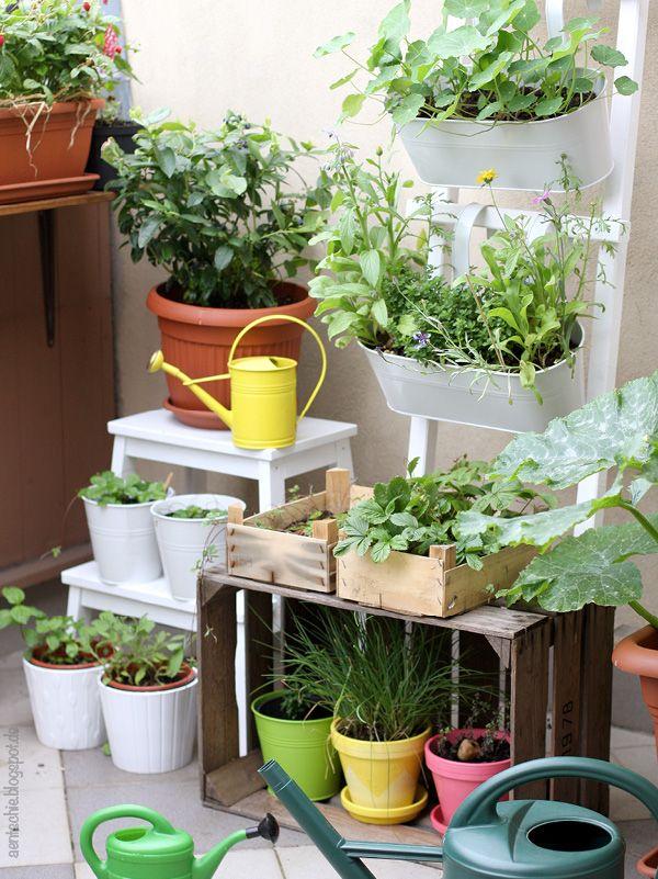 bye bye Balkon Garten recycling, Indoor garten und