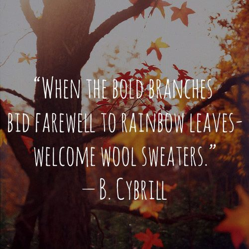 When The Bold Branches Bid Farewell To Rainbow Leaves Welcome Wool Sweaters B Cybrill Autumn Quotes Autumn Leaves Autumn Day