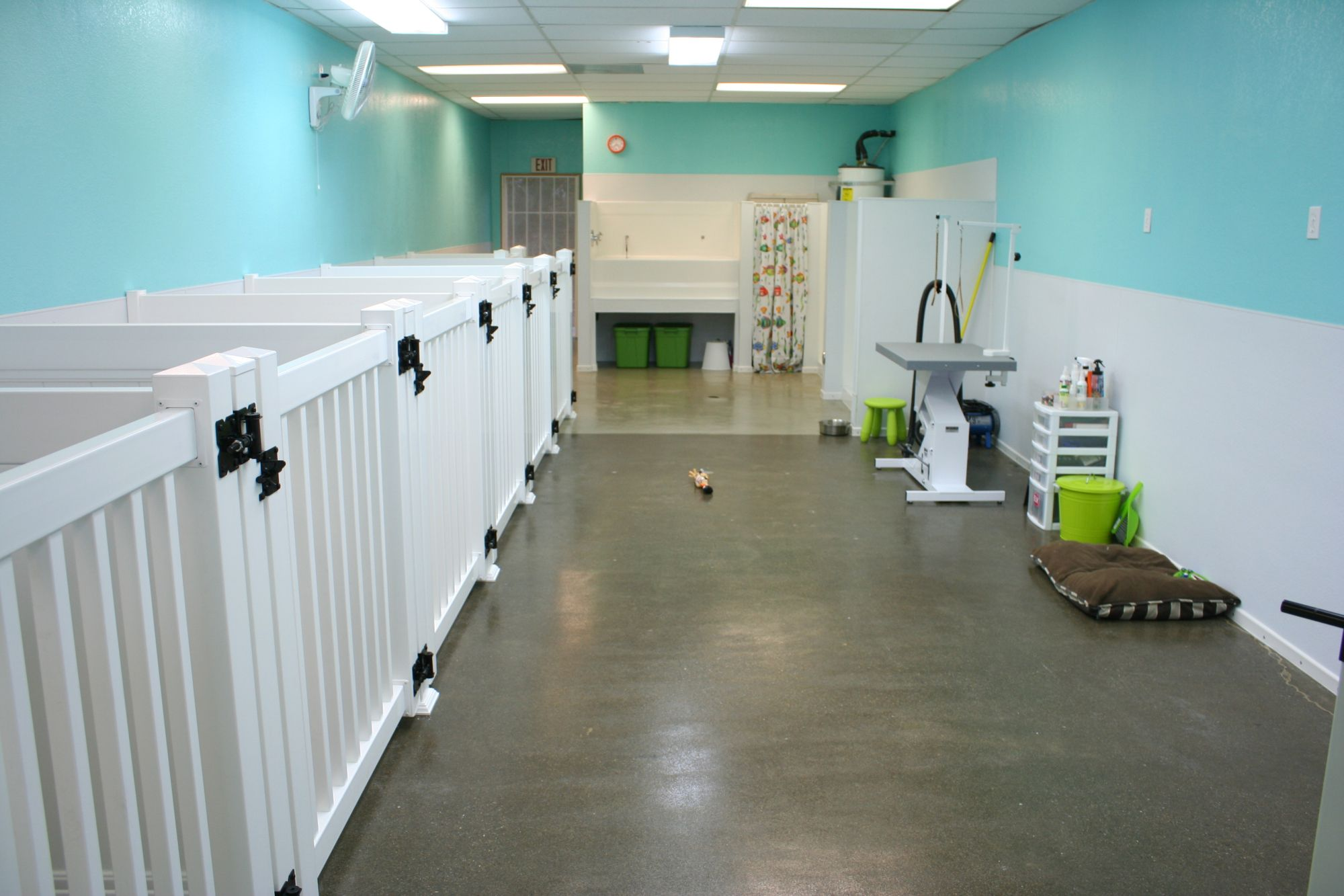 Aloha Pet Grooming Grand Opening Dog Grooming Salons Grooming
