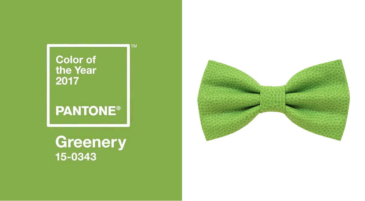 Greenery Bow Tie For Mencolor Of The Year 2017 Pantonelight Green