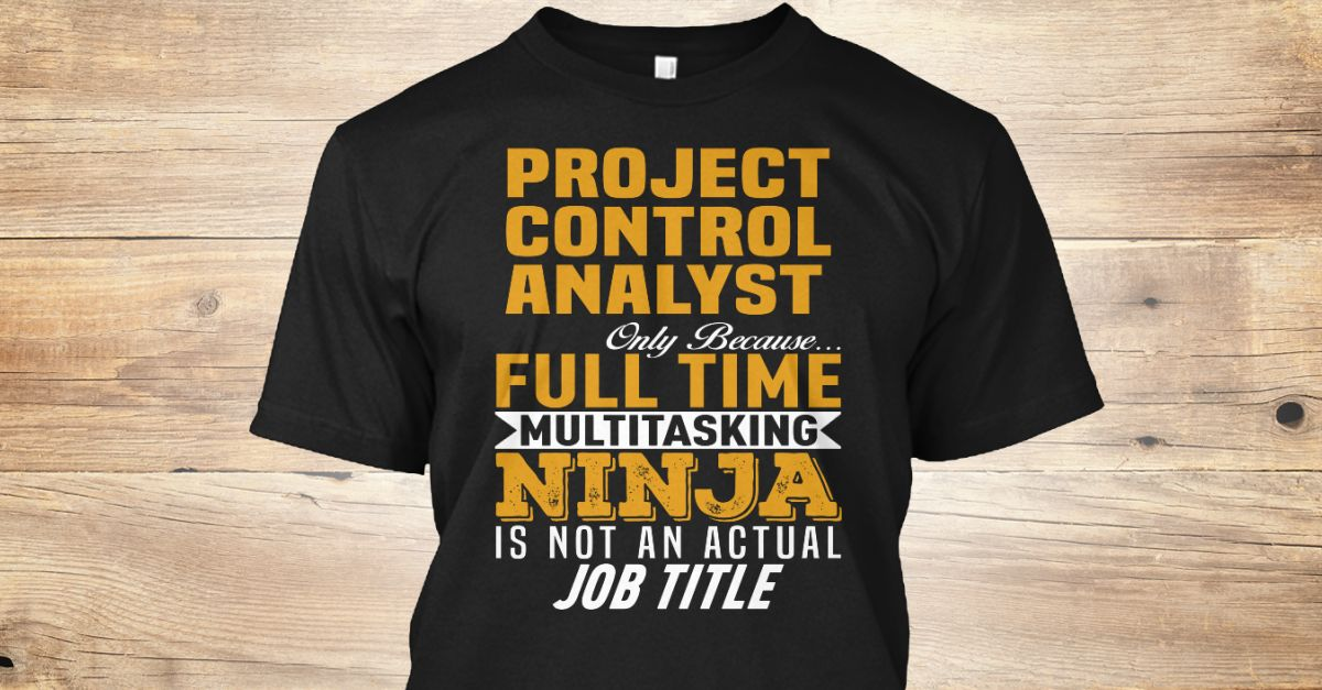 Project Control Analyst