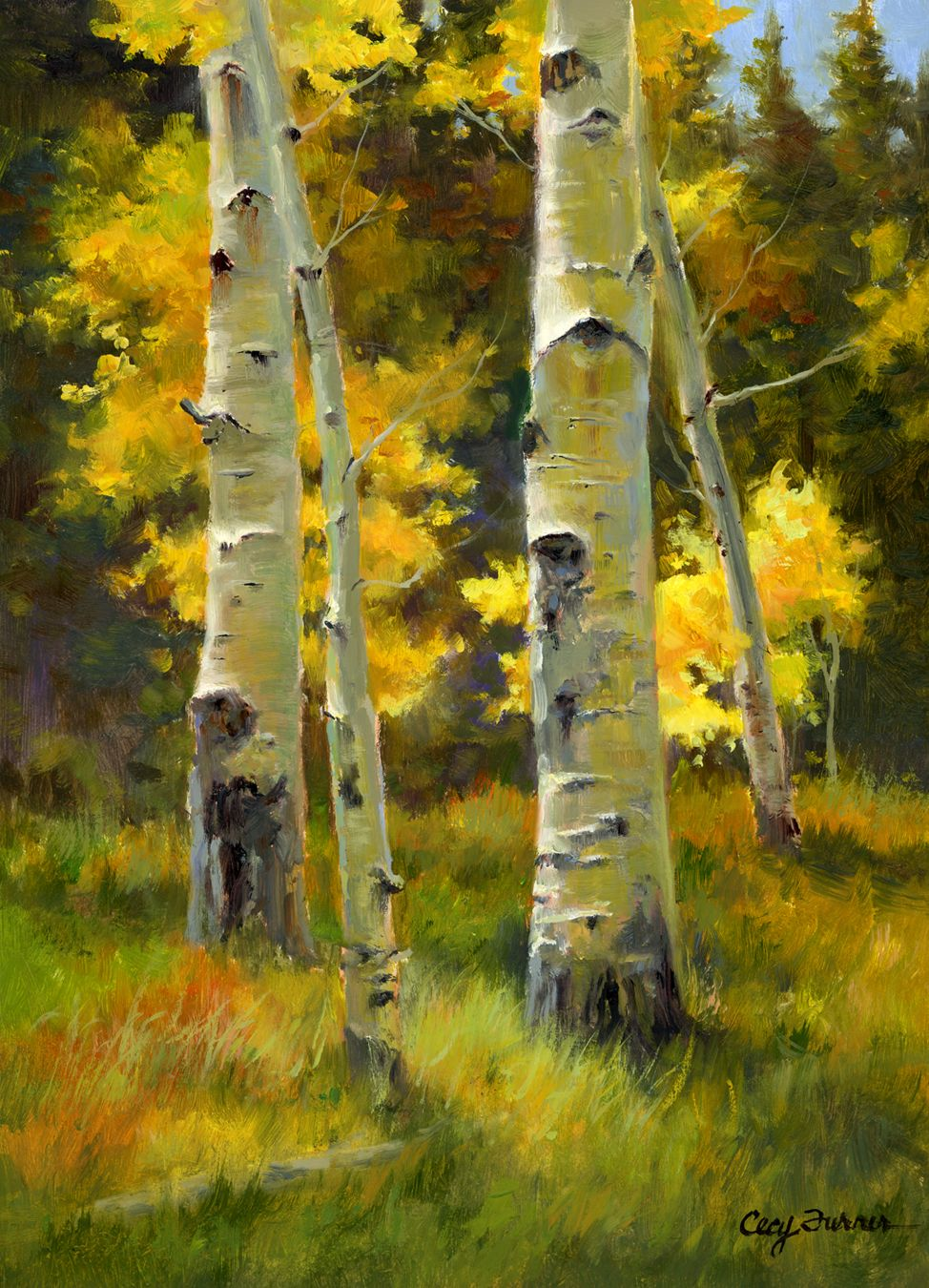 Autumn S Peak At Wild Basin Plein Air Oil 12x9 Aspen Trees Painting