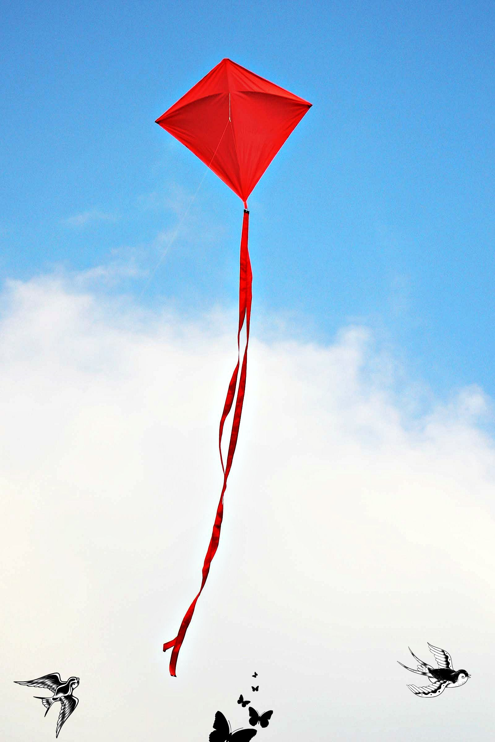 Still Single is Netflix your BFF? Go fly a kite, Kite