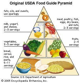 disadvantages of food pyramid