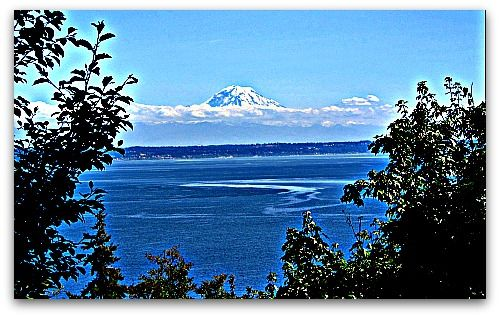 10 Things I Learned This Summer With Images Vashon Island Vashon