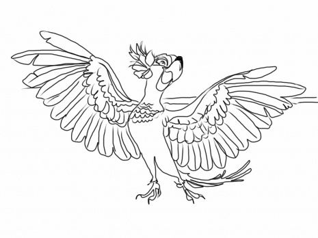 Rio Coloring Page Jewel From Rio Coloring Page