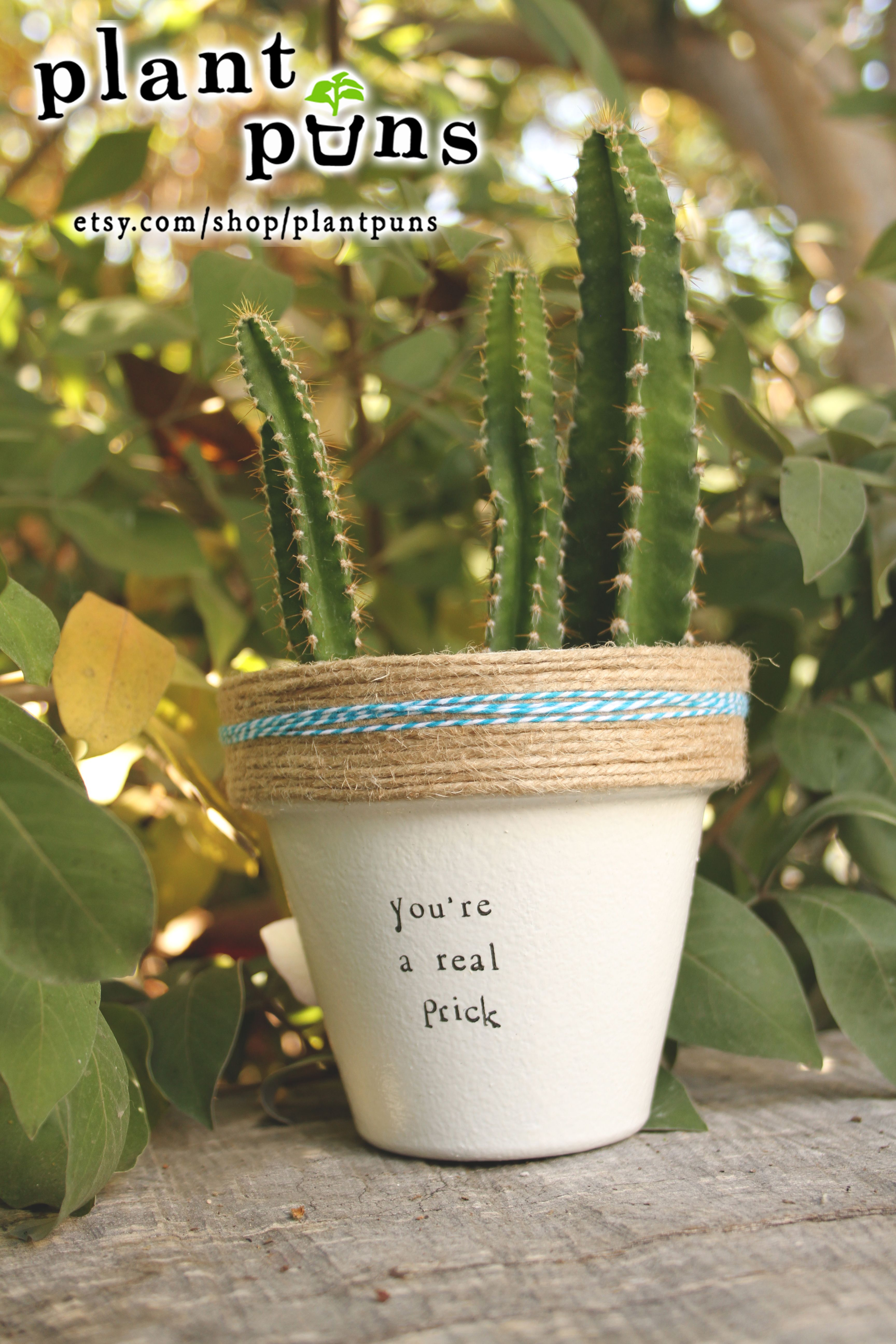 4 3 You Re A Real Terracotta Pot Perfect Mother S Day Gift Indoor Outdoor Aloe Planter Put Pun On It Www Etsy Plantpuns