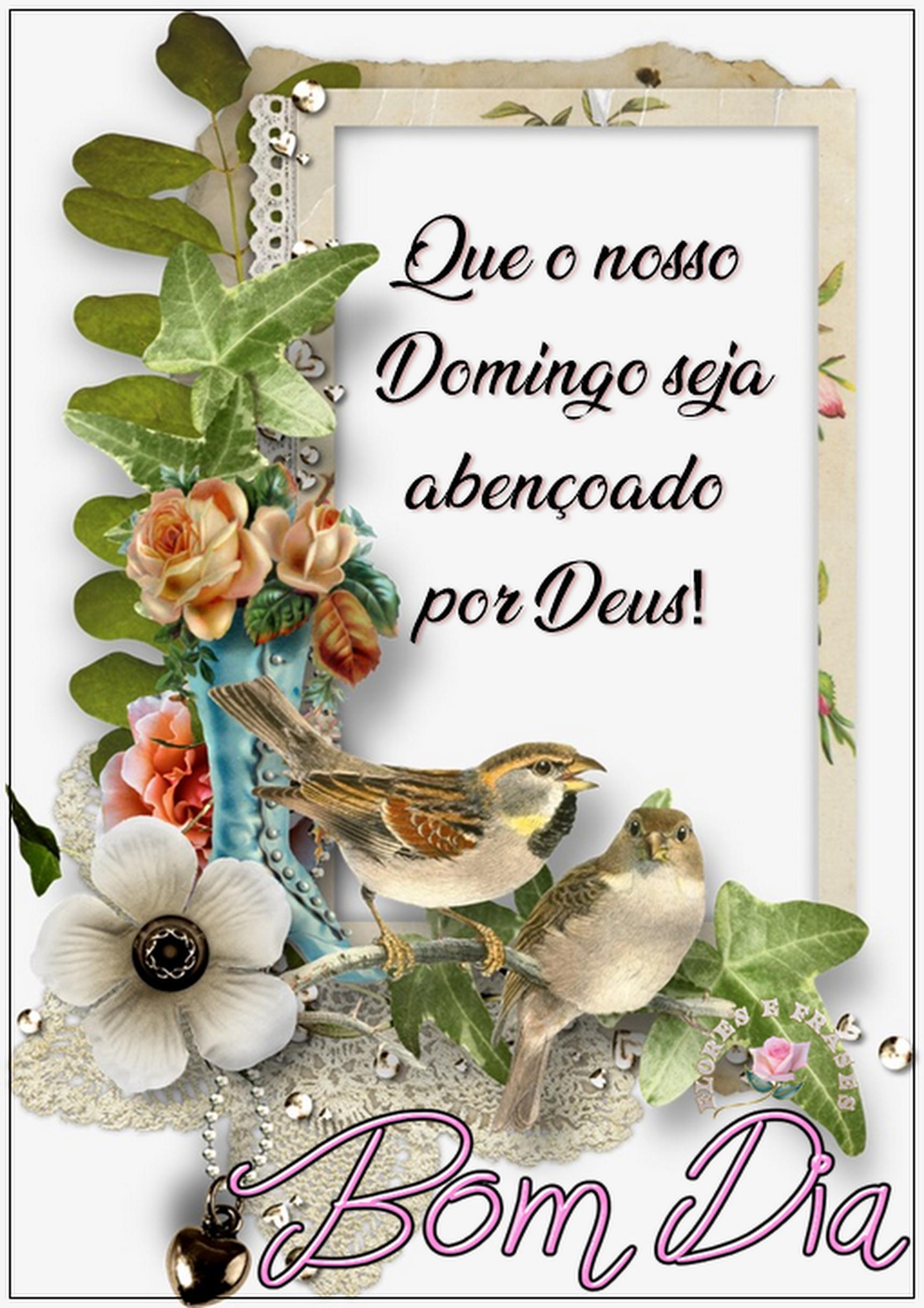 Bom Dia Amigos Abençoado Domingo Para Você E Sua Família