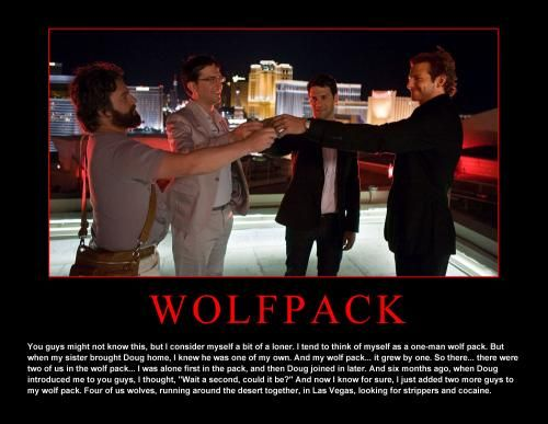 Wolfpack Funny Stuff Hangover Quotes Best Movie Lines
