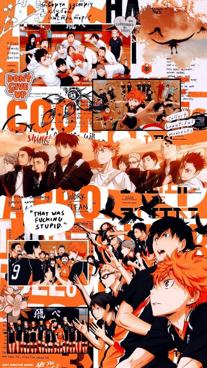 Haikyuu Wallpaper wallpaper by ShxyoHinxta - af - Free on ZEDGE™