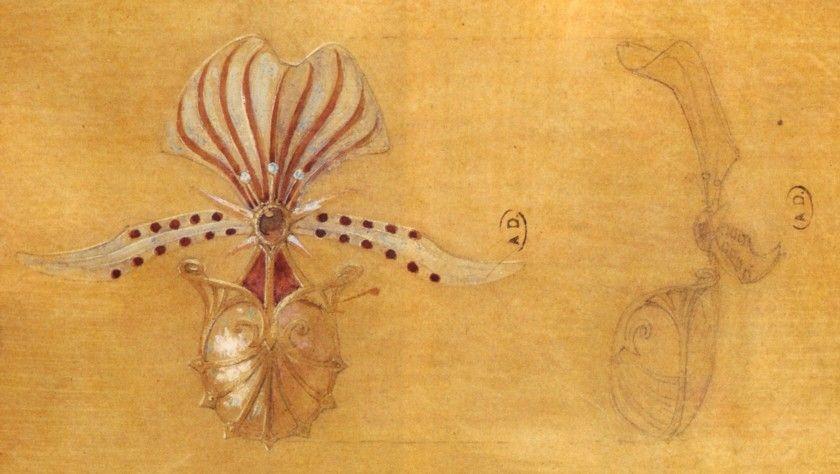 Esquisses et Croquis - Art Nouveau - Broche Orchidée - Georges Fouquet