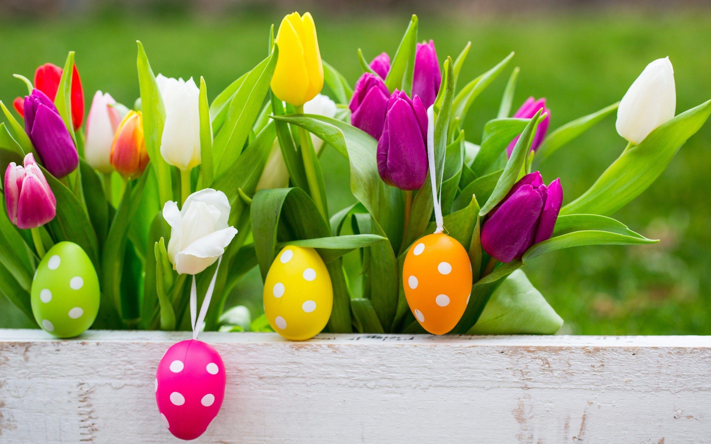 Easter Flower Wallpaper