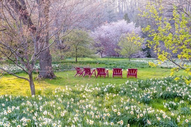 Learn How To Plant Bulbs Creatively With Tips From The New Book The Art Of  Gardening