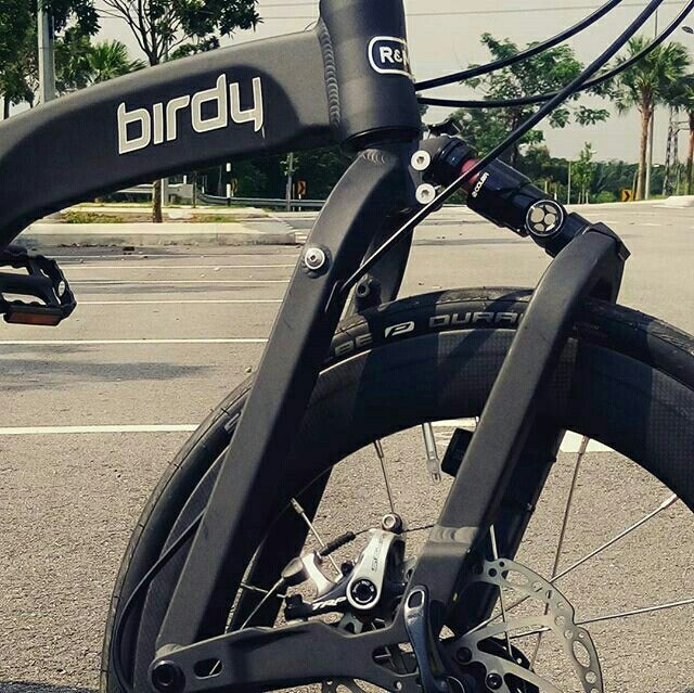 Birdy 3 Modification By Gwcycle Sepeda