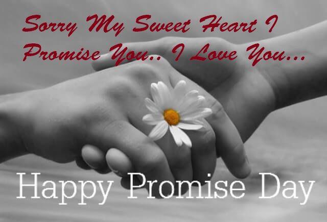 Promise Day Sorry Whatsapp Status DP