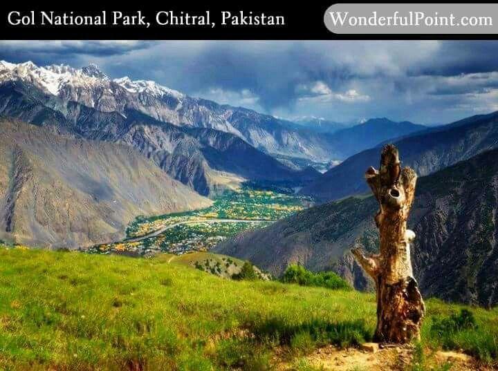 Chitral Gol National Park.