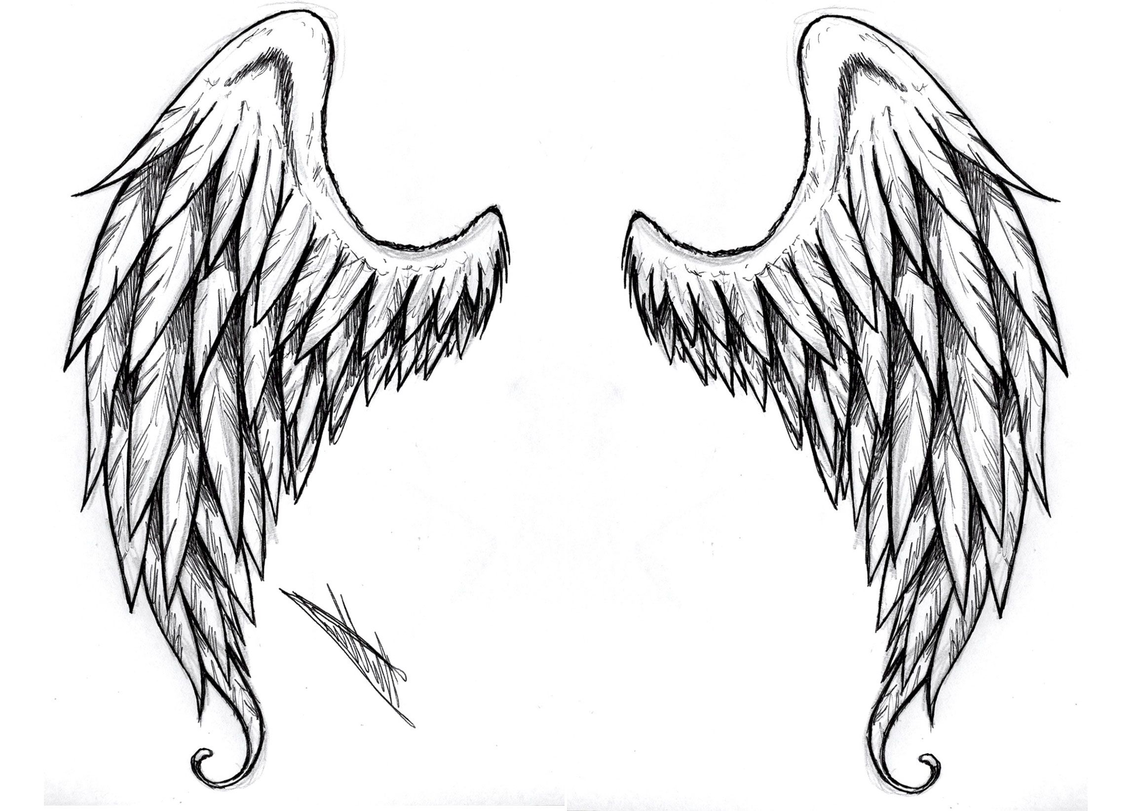 White Angel Wings Tattoos: Black And White Angel Wings Tattoo Designs Pin Angel Wing