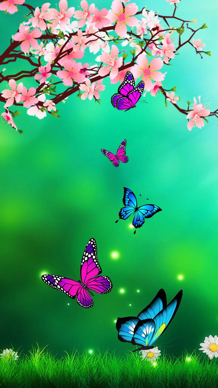 Calming Colors Of Nature Nature Butterfly Blossom Flowers Green Butterfly Wallpaper Backgrounds Flower Background Wallpaper Flower Phone Wallpaper