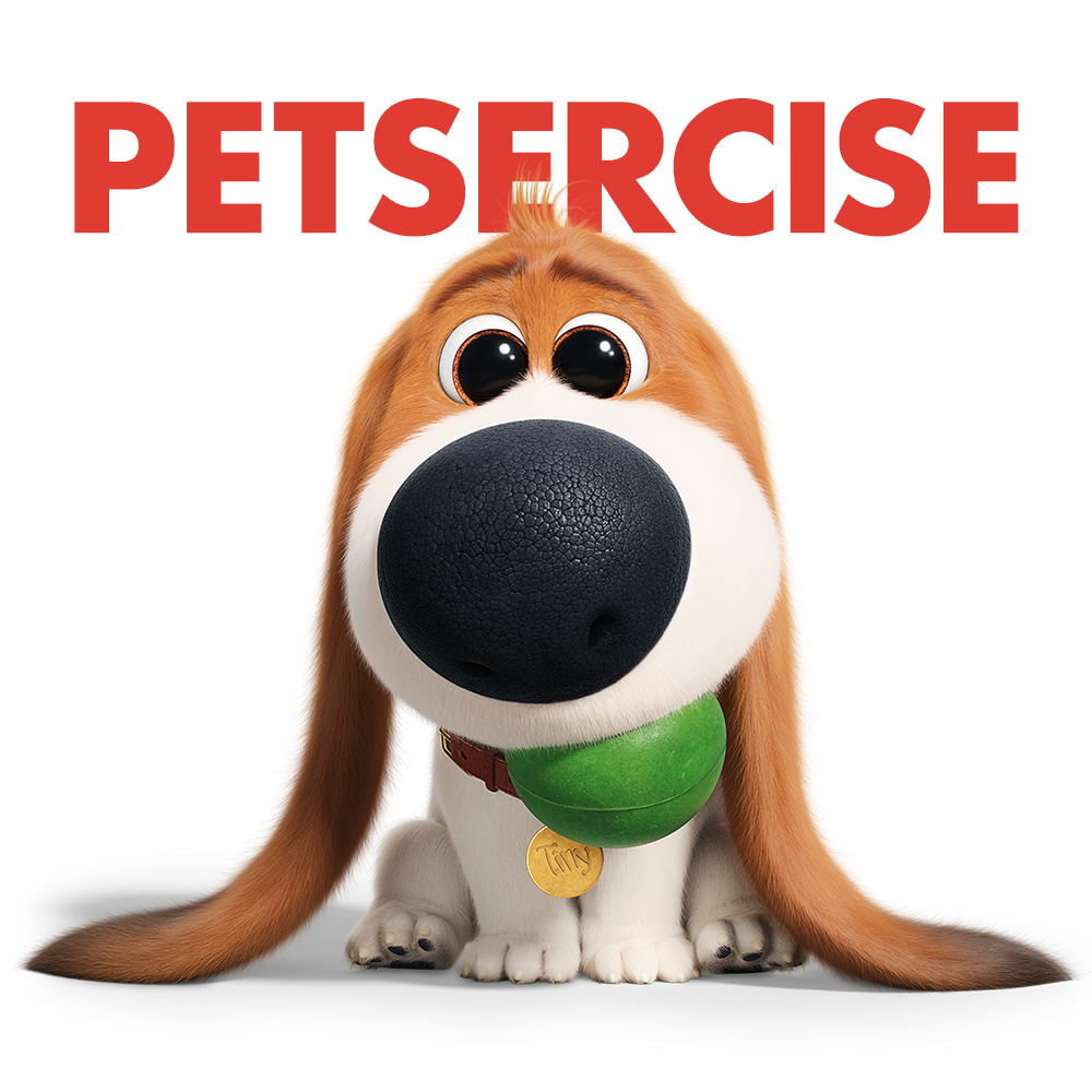 The Pets Return This Summer In The New Movie The Secret Life Of Pets 2 Coming To Theaters Ju La Vida Secreta De Tus Mascotas Fotos De Animales Tiernos Mascotas