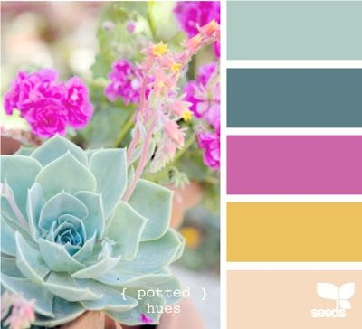 yellow + pink - design seeds Light turquoise -living room, pink ...