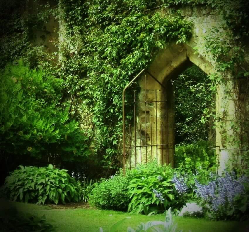 Mykindafairytalee Via Secret Garden By Smushfaace On Deviantart Realm Of The Fae Magical