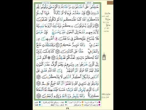الصفحة 39 من المصحف الشريف سورة البقرة مشروع حفظ القرآن الكريم Youtube Youtube Songs Make It Yourself