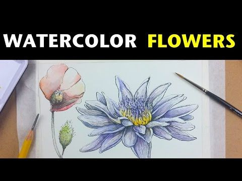 How to draw and paint flowers with watercolor & ink - YouTube