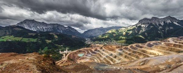 Wild Plant Gathering in the Chthulucene (With images)   What is bitcoin mining, Ecosystems ...