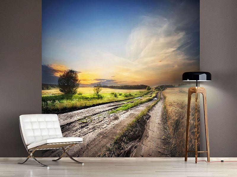 Foto #Tapete Sonnenaufgang am Feld Fototapeten Landschaft