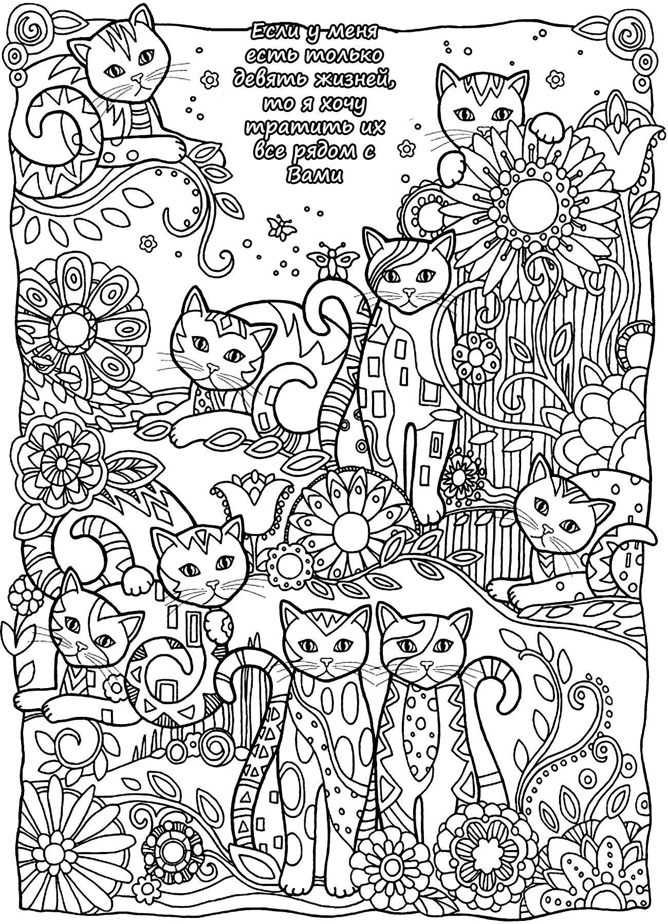 раскраска антистресс для девочек с животными | Книжка ...