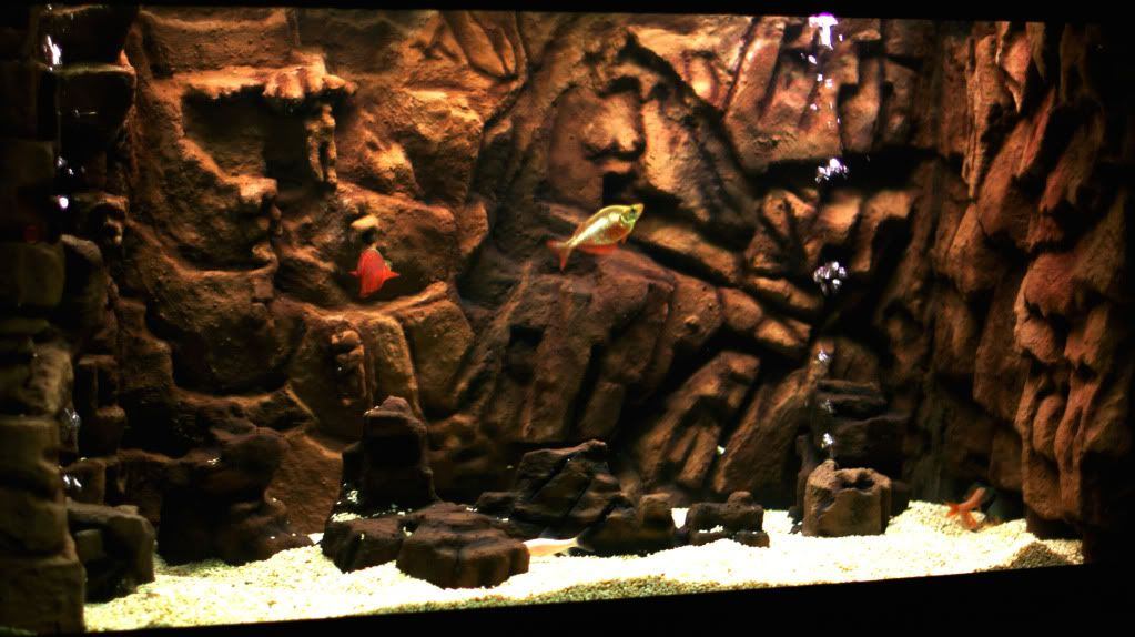 Volcanic background 3d background aquariums pinterest for Fish tank volcano