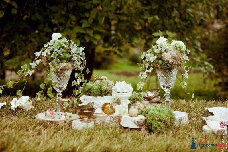 пикник в английском стиле | Английский стиль, Пикник, Стиль