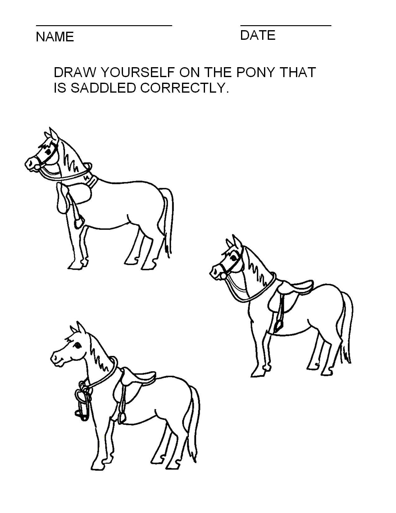 Illustrations Handouts Horse Lessons Horse Camp Horses