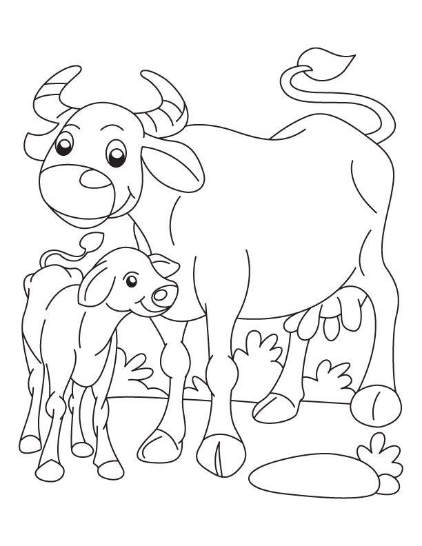 Buffalo And Calf Coloring Page Coloring Pages For Kids Color