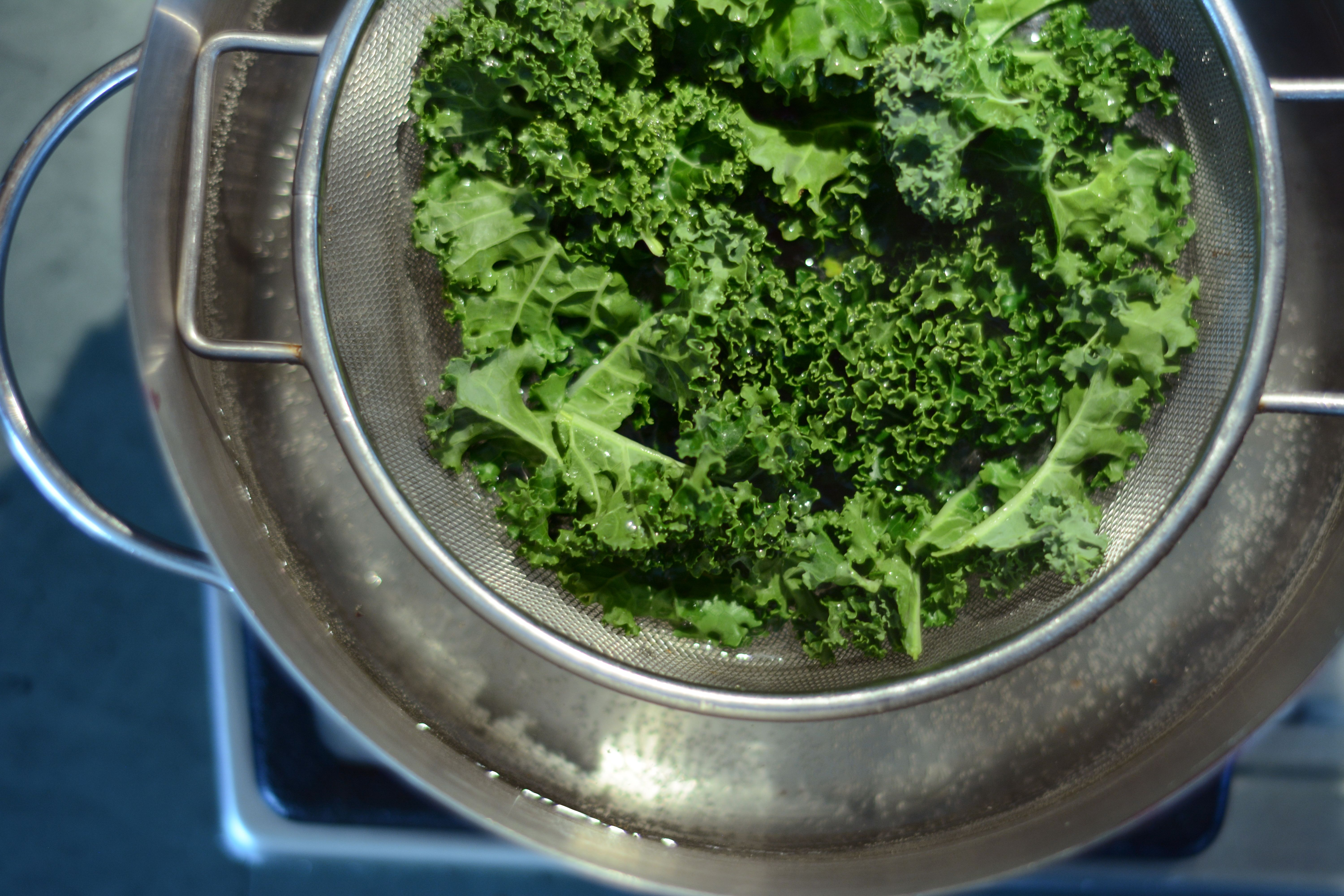 Kale and spinach apple puree powered by ultimaterecipe baby babies forumfinder Images