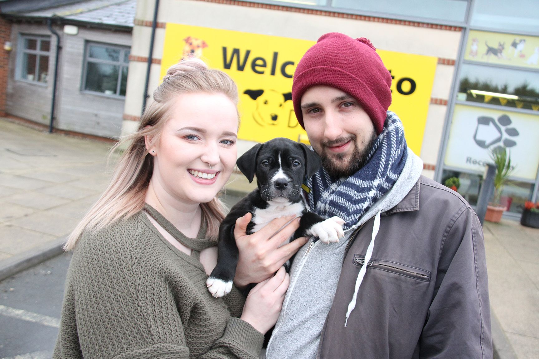 Dogs trust celebrates rescue dogs and their owners ahead