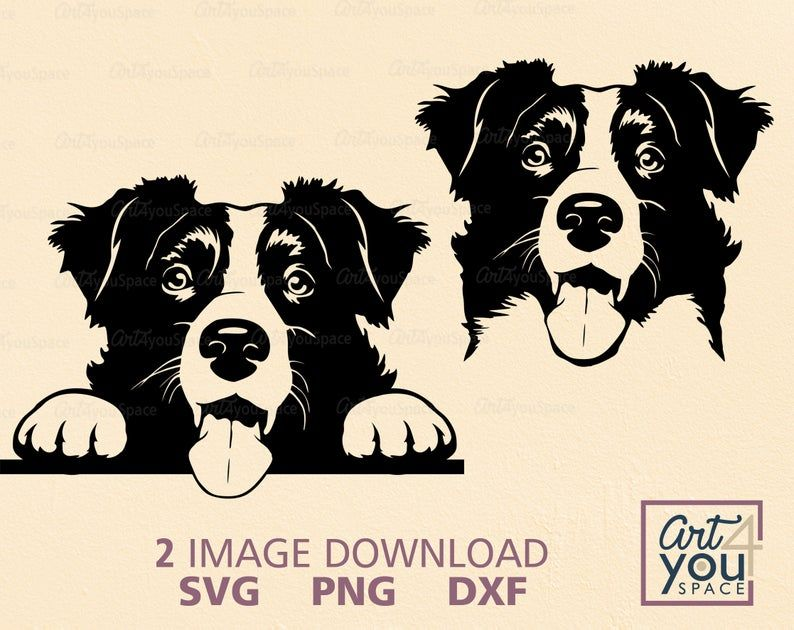 Cute Border Collie Svg Peeking Dog Svg File For Cricut Face Etsy In 2020 Cute Borders Border Collie Pugs Funny