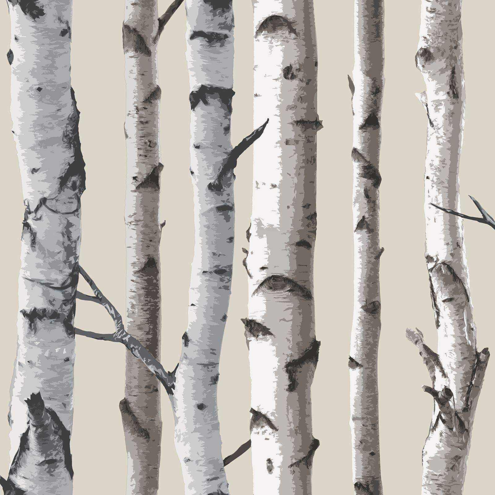 FINE DECOR BIRCH TREES 10m FOREST WALLPAPER CREAM SILVER