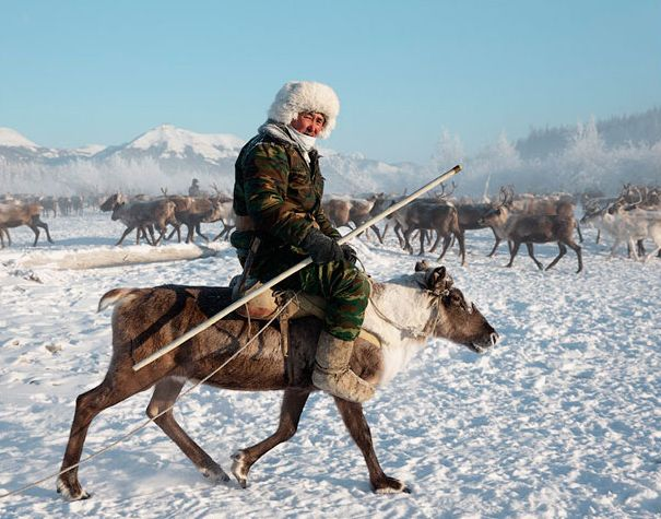The Sakha Yakutia Republic The Perfect Place For Ethno Tourism Tourism Reindeer Herders Lapland