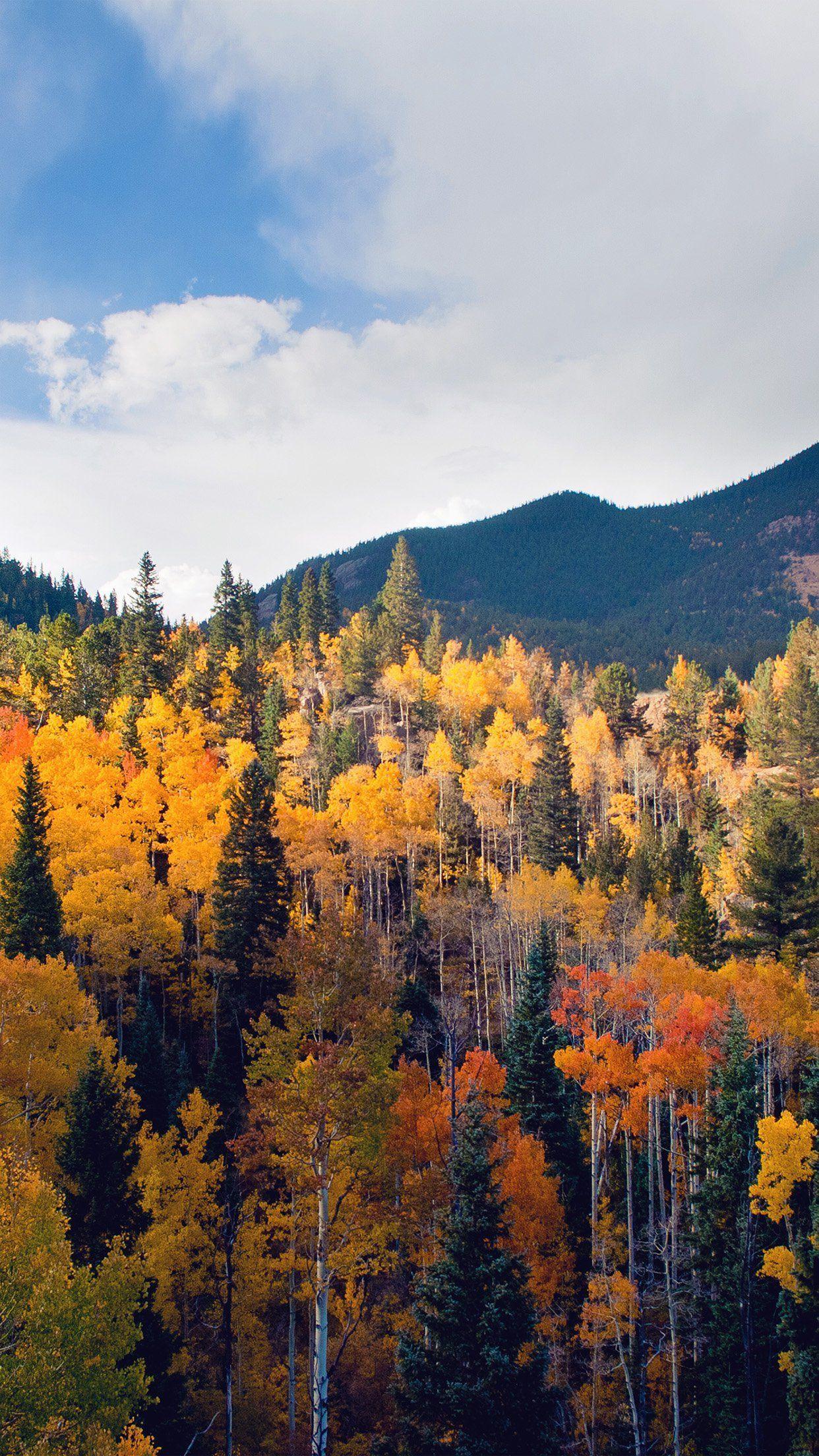 Red Autumn Wallpaper. #autumn #fall #nature #iphone #