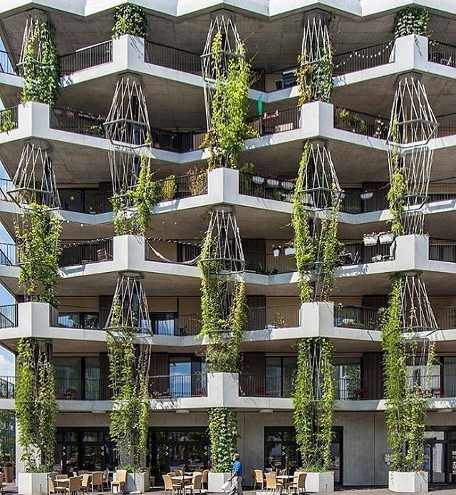 Residential Building By Müller Sigrist Architects. (2015