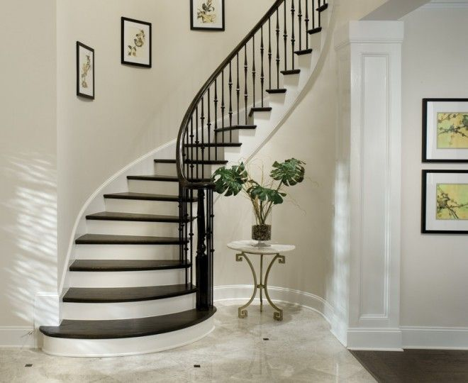 Cool Wrought Iron Balusters Vogue Tampa Traditional Staircase Remodeling  Ideas With Bullnose Capped Baseboard Closed Staircase
